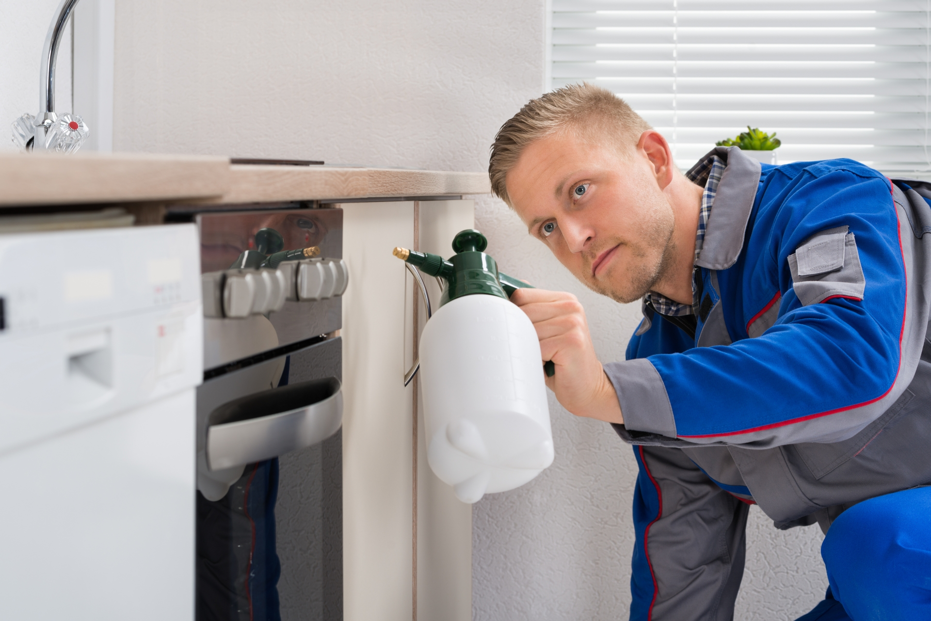 Pest Inspection, Pest Control in South Kensington, SW7. Call Now 020 8166 9746
