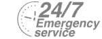 24/7 Emergency Service Pest Control in South Kensington, SW7. Call Now! 020 8166 9746